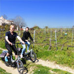 the Secret Organic Vineyards of Nice eBike Tour - Half-Day Tour from Nice - Things to do in Nice
